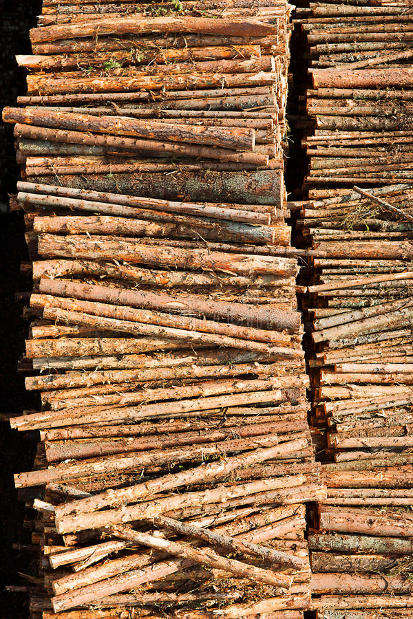Download Timber resources stock image. Image of cargo, lumber - 28094409