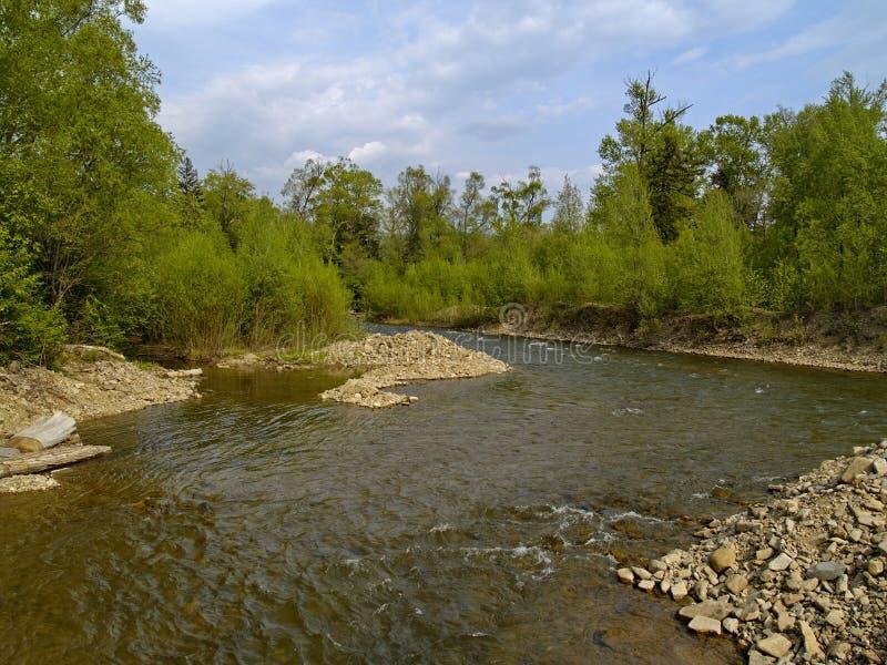 The Timber river stock photos