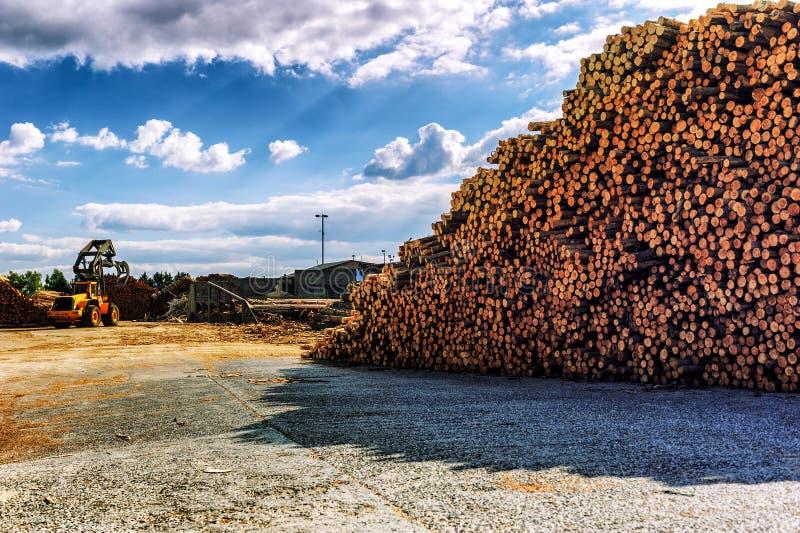 Timber stacked at lumber mill stock photos