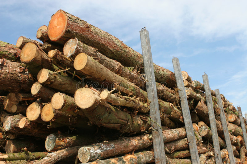 Timber by the Truckload stock images