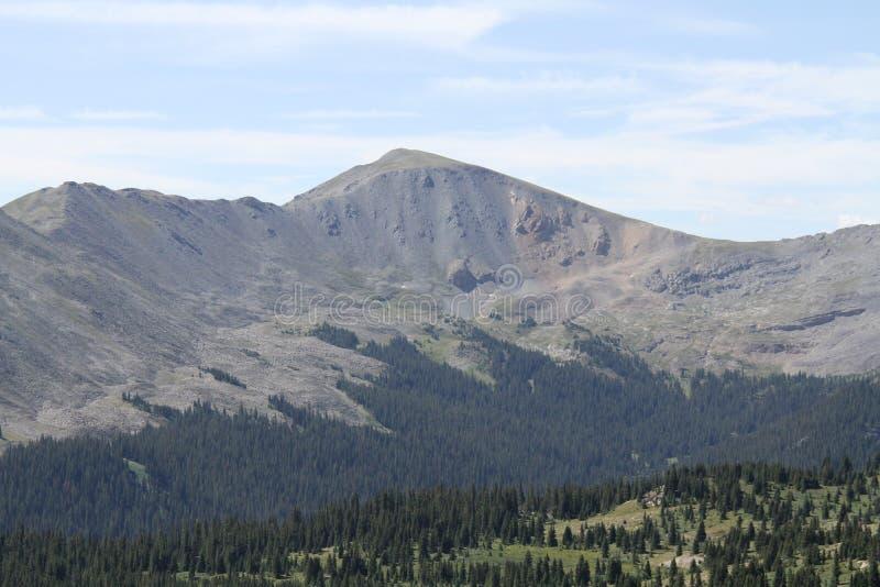 Timberline, Rocky Mountains photographie stock libre de droits