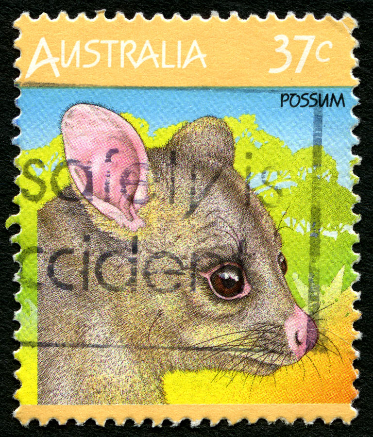 Timbre-poste australien d'opossum image stock