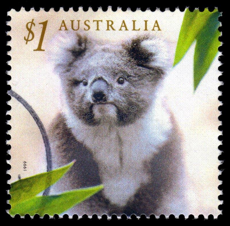 Timbre-poste de koala de l'Australie images libres de droits