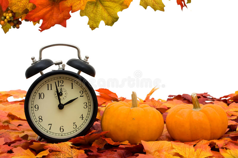 Time change. Fall coloured leaves with a pumpkin isolated on a white background, Fall Leaves stock photos