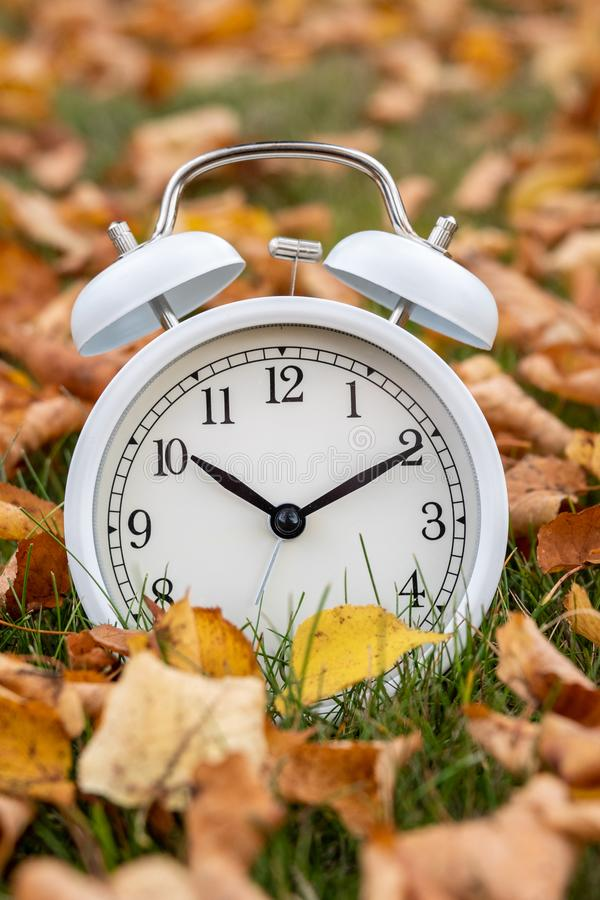 Time change, classic white alarm clock outside on grass and moss with fall color in many yellow birch leaves royalty free stock images