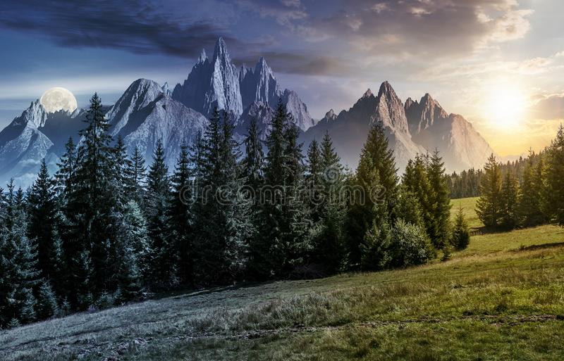 Time change concept over forest and rocky peaks. Day and night time change concept. spruce forest on grassy hillside in mountains with rocky peaks. gorgeous royalty free stock photo