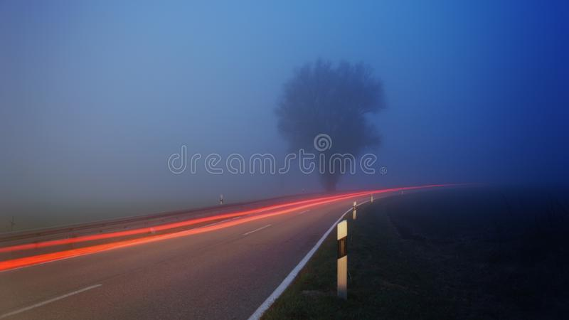 Time-lapse Photography of Fog Filled Road Near Tree stock photos
