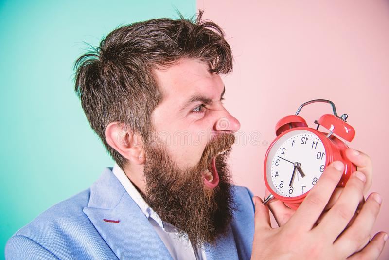 Time management skills. How much time till deadline. Time to work. Man bearded aggressive businessman hold clock. Stress. Concept. Hipster stressful working stock image