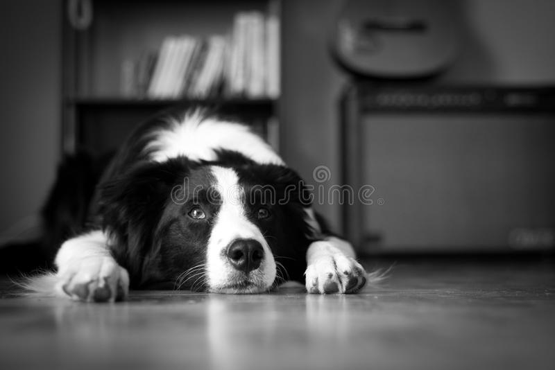 Time to rest royalty free stock photo