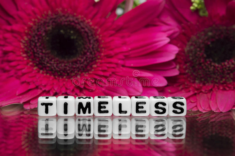 Timeless text message with flowers. Timeless text message with pink flowers in the background stock photography