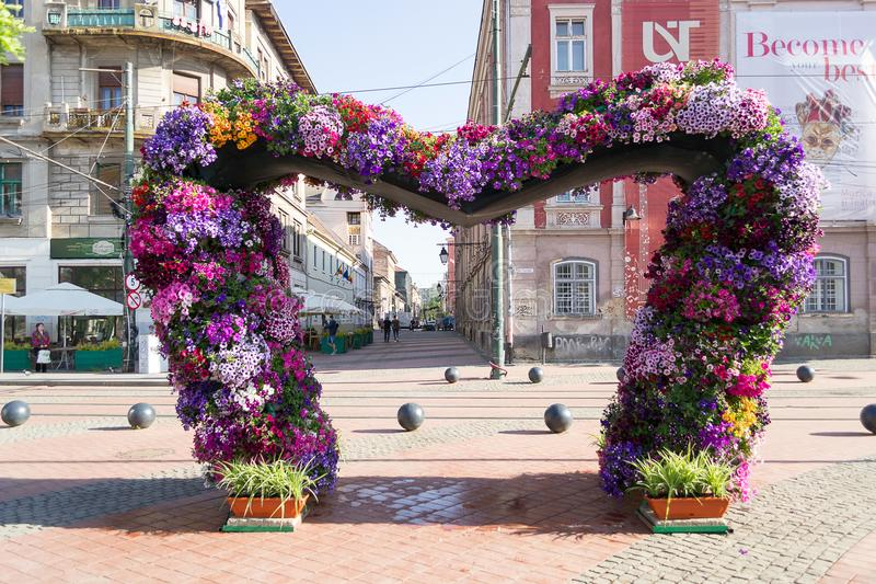 Timfloralis - The Flowers Festival, Timisoara, Romania. Beautiful floral decoration in the shape of a heart in Liberty Square during Timfloralis - The Flowers stock photo