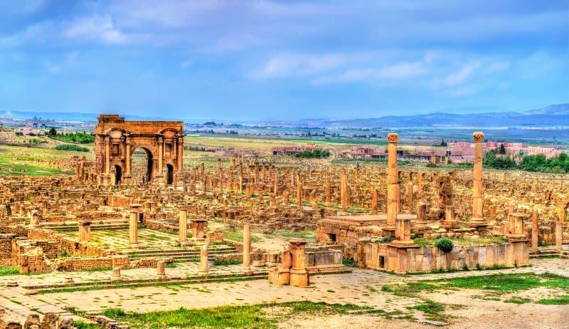 Timgad,一个罗马巴巴里人城市的废墟在阿尔及利亚 库存照片