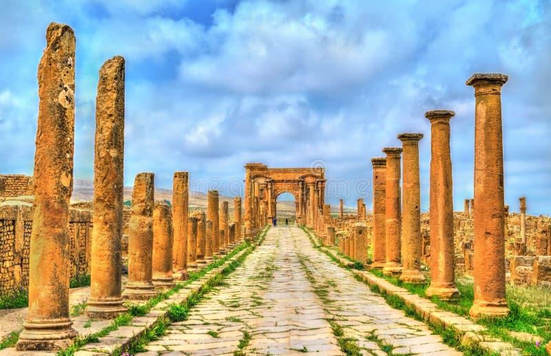 Timgad, rovine di una città di Romano-berbero in Algeria fotografia stock libera da diritti