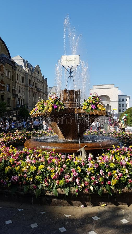 Timisoara. Center of Timisoara city royalty free stock photography