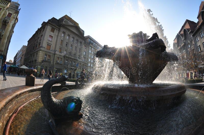Timisoara fountain stock photos