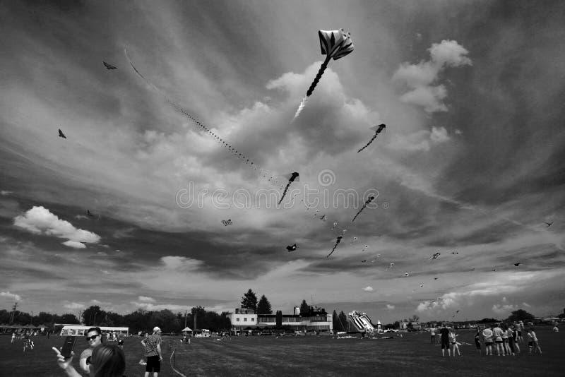 TIMISOARA, ROEMENIË 06 01 20187 Kleurrijke vliegers vullen de hemel Zwart-wit schot stock fotografie
