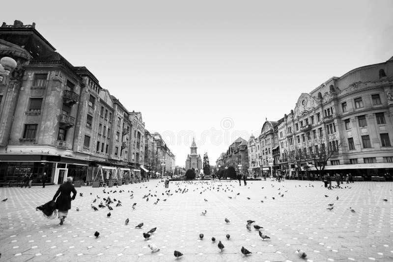 Timisoara, Roemenië - Piata Victoriei Victory Square royalty-vrije stock fotografie