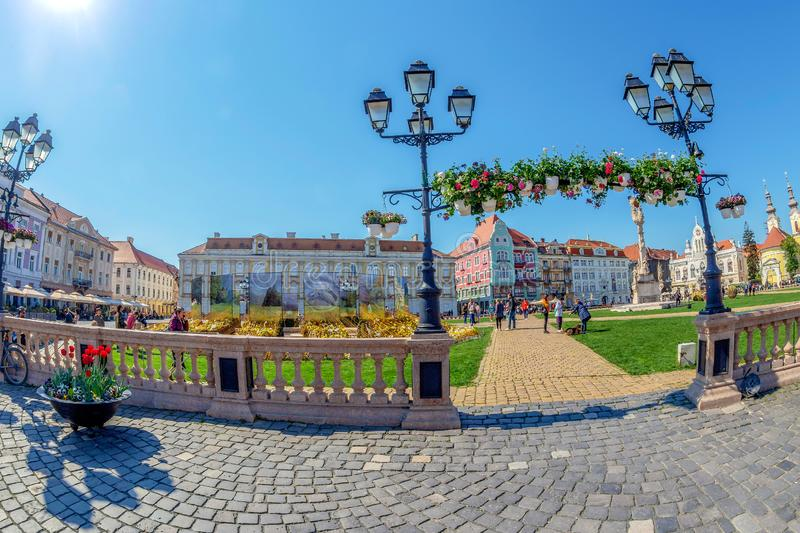 Union Square decorated with flowers, Timisoara, Romania. TIMISOARA, ROMANIA - APRIL 20, 2019: Union Square decorated with flowers. In front one decorative flower royalty free stock photos