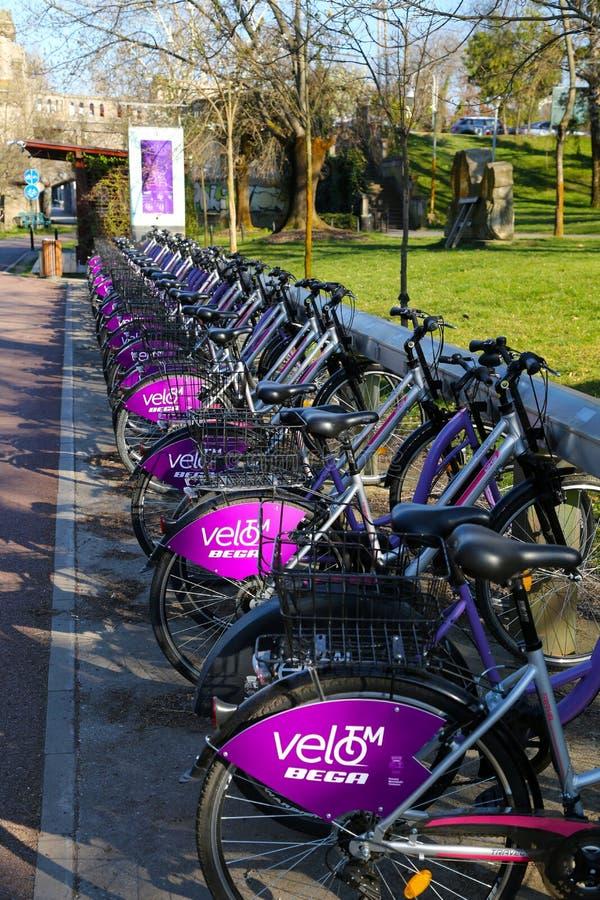 TIMISOARA, ROMANIA-03 28 Sistema alugado público da bicicleta 2019 Bicicletas entradas na estação fotos de stock