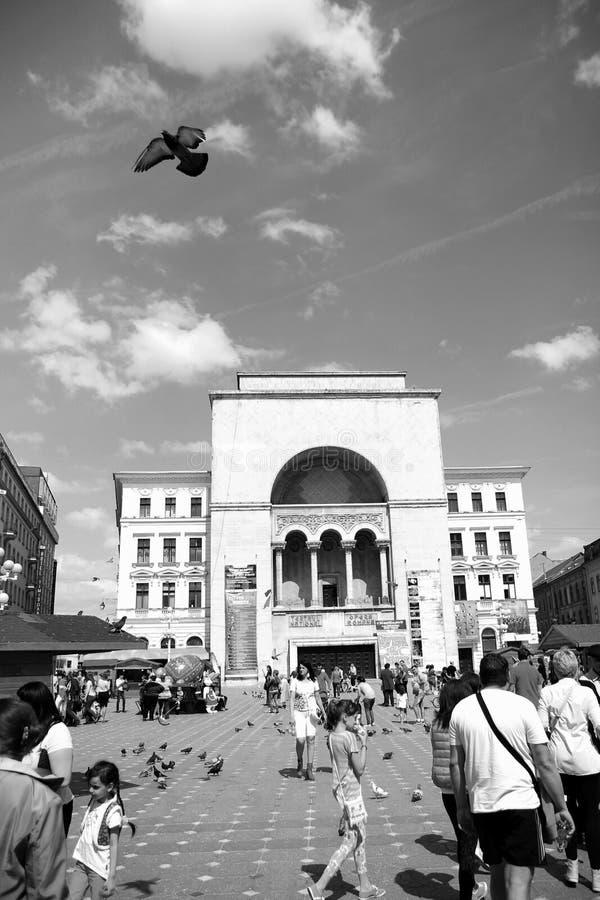 Timisoara, Roumanie - le centre ville de théatre de l'opéra dedans de la ville image libre de droits