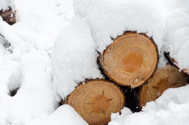 Timmerjournaler under en tjock snöräkning arkivbild
