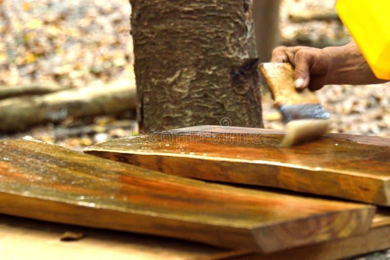 Timmerman die woodstrain schilderen stock afbeeldingen