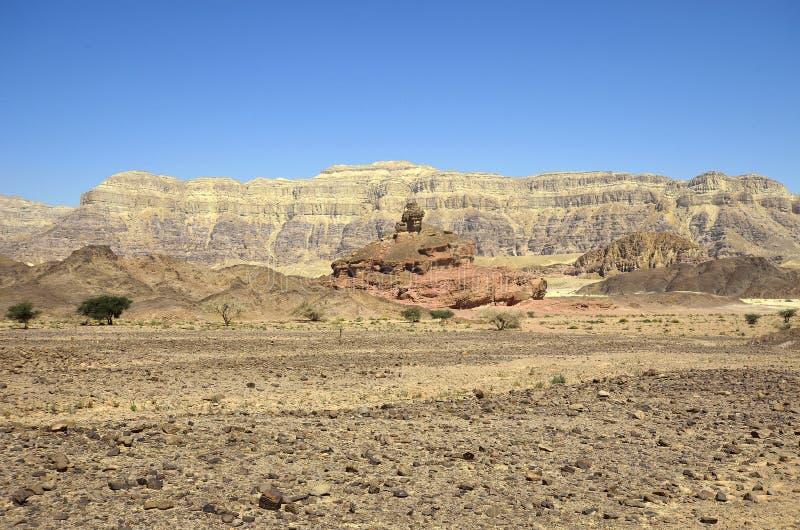 Timna nationalpark arkivfoto