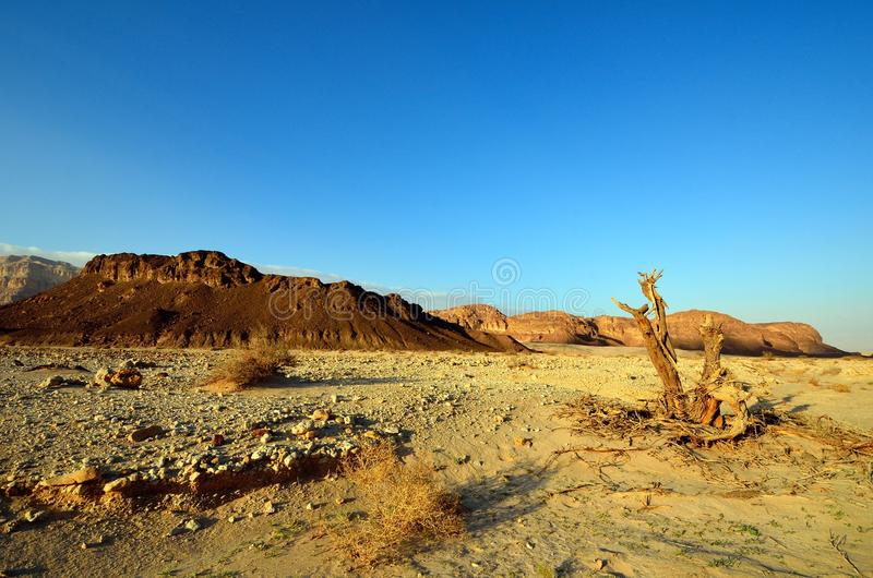 Download Timna Valley stock photo. Image of landscape, east, arid - 32733030