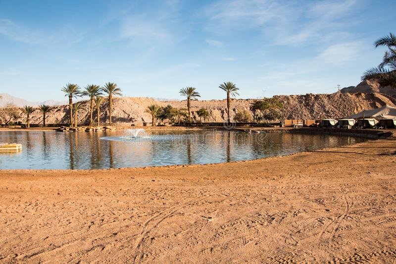 Oasis with lake, Near Eilat. Timna valley Oasis with lake, Near Eilat, Israel stock photo