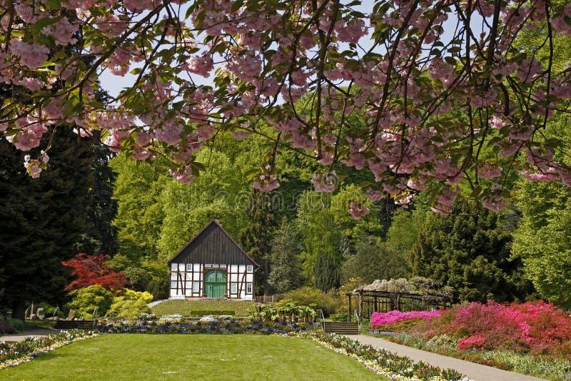 timrat botanisk trädgårdgermany half hus royaltyfri bild