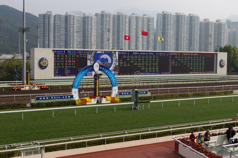 tin för Hong Kong racecoursesha royaltyfri foto