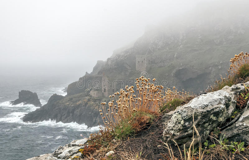 Tin Mines in the Ocean Fog stock photography