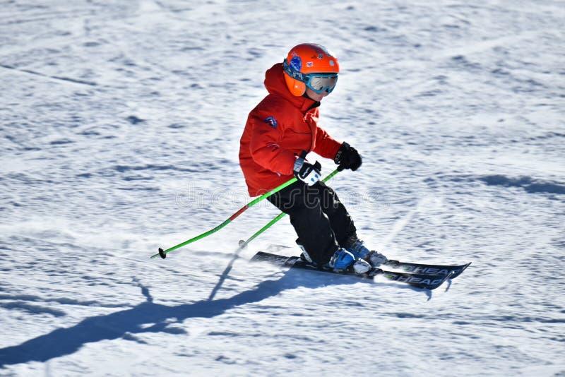 Tina Sutton Memorial - slalom Ski Competition immagini stock libere da diritti