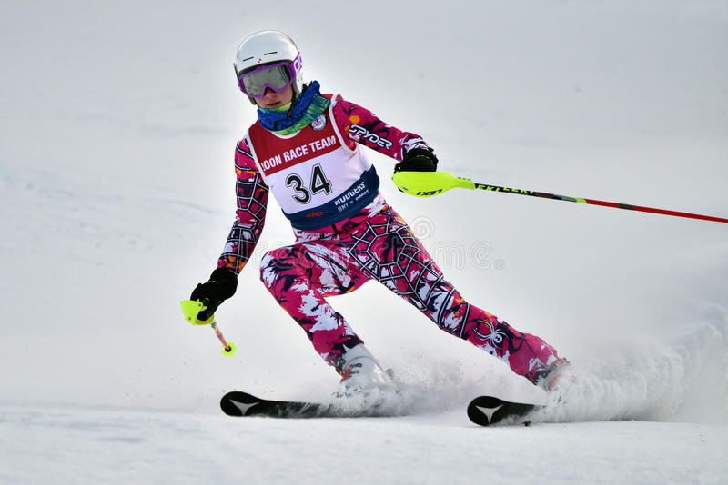 Tina Sutton Memorial - Slalom Ski Competition lizenzfreie stockfotos