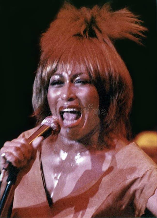 Tina Turner stock afbeelding
