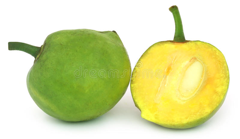 Tinctoria do Garcinia ou Daophal comestível de Bangladesh foto de stock royalty free