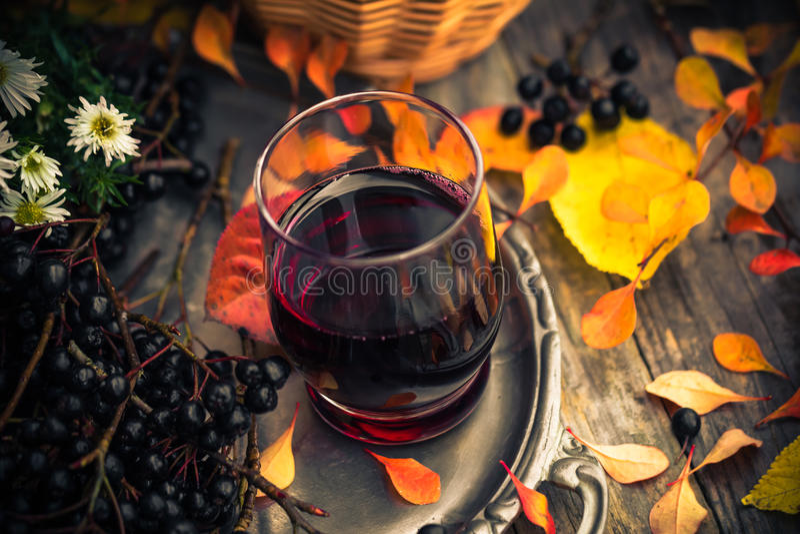 Tincture κουζινών φθινοπώρου chokeberry τρύγος τοπίου στοκ εικόνα με δικαίωμα ελεύθερης χρήσης
