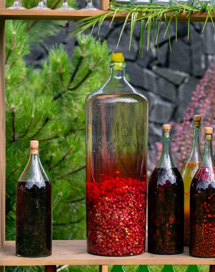 Tincture butelki cytryna, rodzynek, jagody i rowanberries, jako depresji wydajny ziołowy hypericum właśnie medycyny perforatum cz zdjęcia royalty free