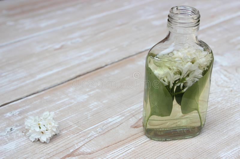 Tincture of lilac flowers. Medical tincture from flowers of white lilac on boards royalty free stock photos