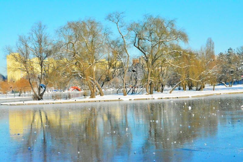 Tineretuluipark, Boekarest, Roemenië, de wintertijd stock fotografie