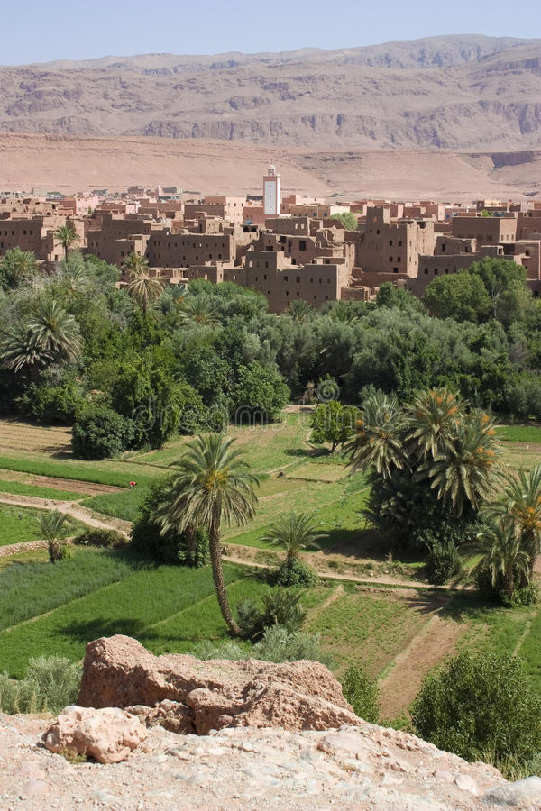 Tinerhir Oasis, Morocco. stock photo
