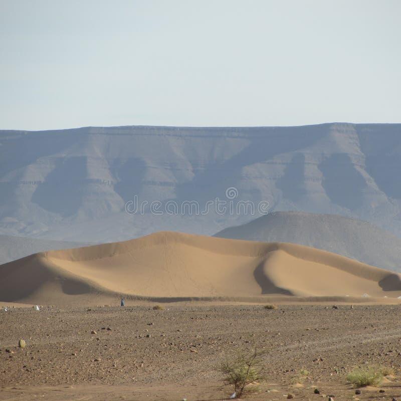 Tinfou dyn Zagora Marocko arkivfoton