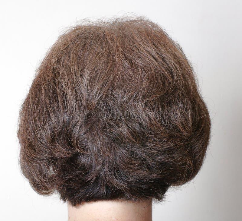 Tingido para o cabelo cinzento marrom foto de stock royalty free