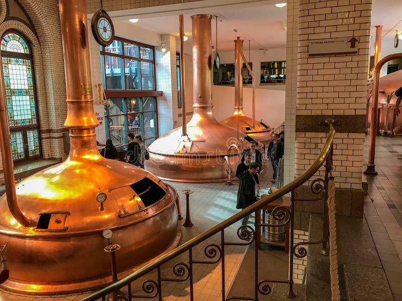 Tini dentro la fabbrica di birra di Heineken a Amsterdam fotografie stock libere da diritti