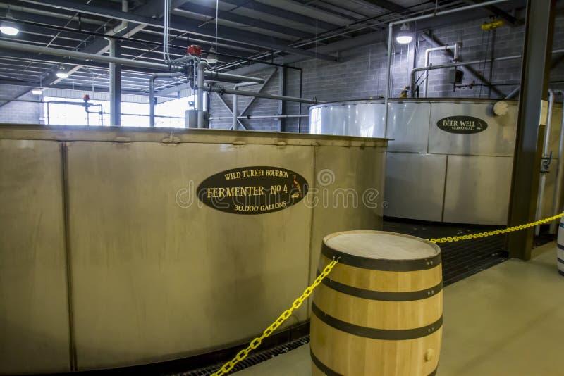 Tini selvaggi di fermentazione della Turchia immagine stock