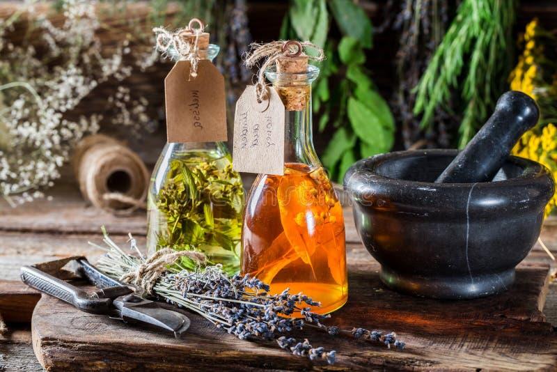 Tinktur med örter i flaskor som en hemlagad bot royaltyfri foto
