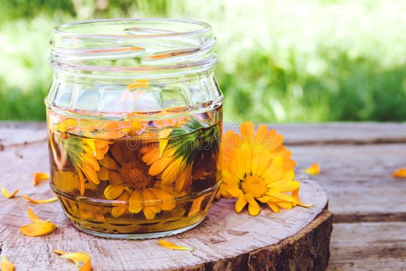 Tinkturextrakten av calendulaen med nya blommor i ett exponeringsglas kan på en träbakgrund i natur Extrakt av tinktur av calendu arkivbild