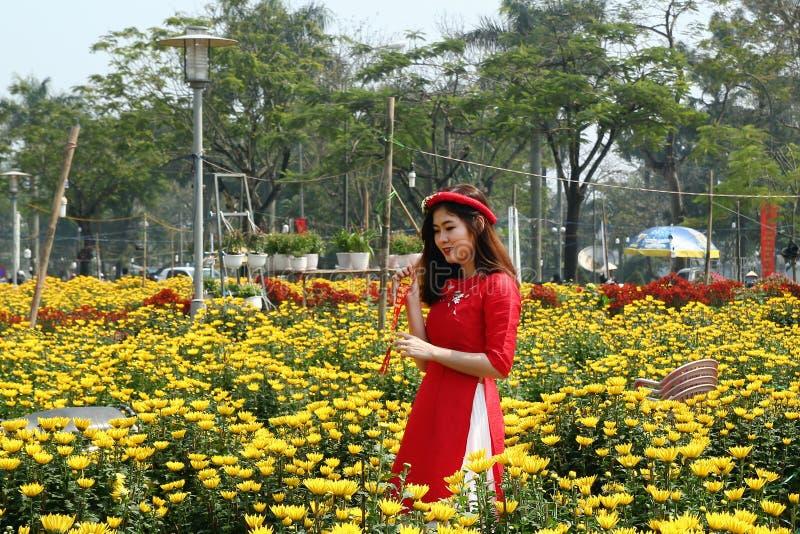 Tint, Vietnam - Februari 10, 2018: Portret van jonge Vietnamese vrouw in een traditionele rode kleding stock foto's