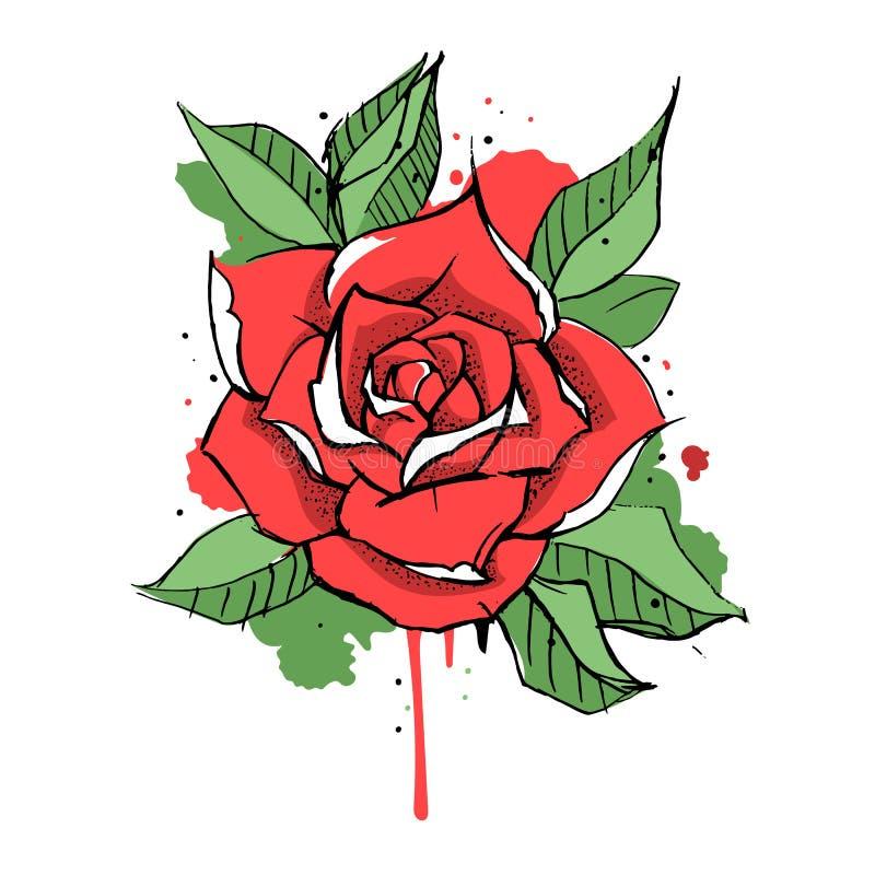 Tinta e respingo de Rosa ilustração royalty free