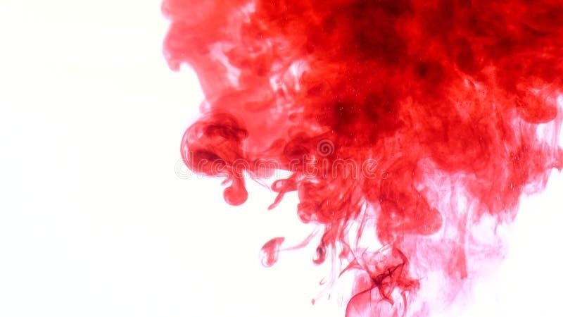 Tinta roja en agua Extracto fotos de archivo